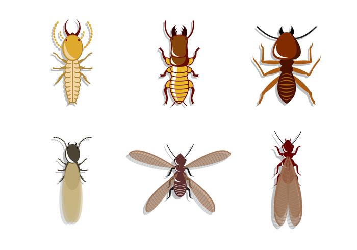 free-termite-vector